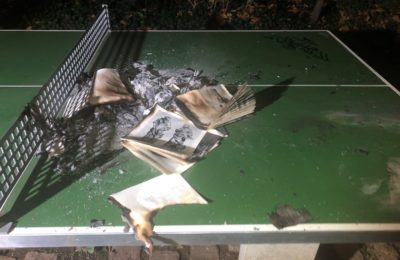 266. Brand Bücher, Mosergarten